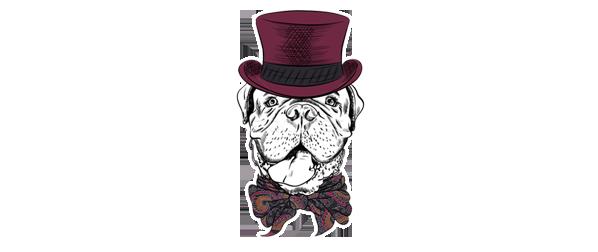 7 Mastiff Breeds How To Choose The Right One For You Mastiff Master Mastiffmaster Com